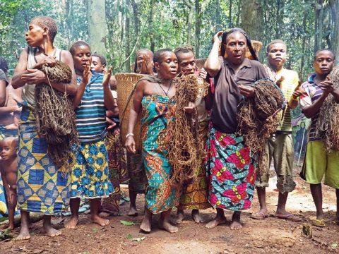 Pygmies in Central African Republic