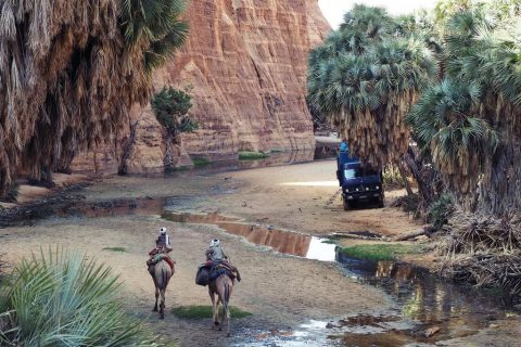 Ennedi tours in Chad