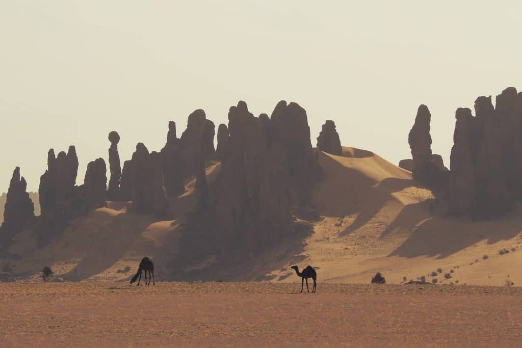 Travel Ennedi Chad