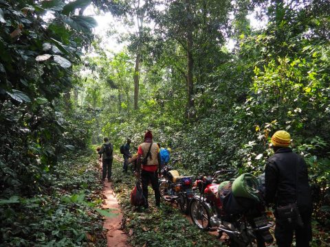Tours in Central African Republic