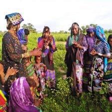 Mbororo womens Chad