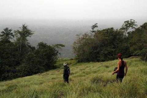 Ivory Coast tours