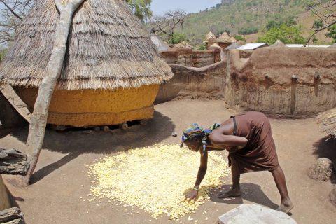 Tamberma Togo