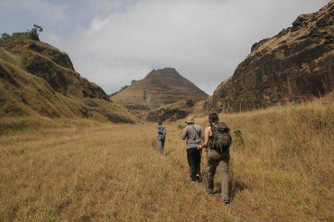 Trekking Nimba West Africa