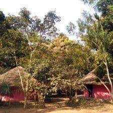 Uanan campamento en Cantanhez Guinea Bissau