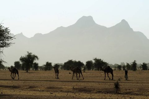 Ecotourism in Guera Chad