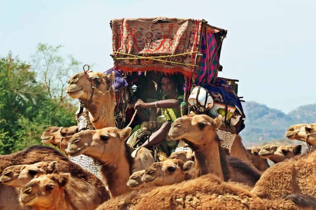 Peoples and cultures of Chad,