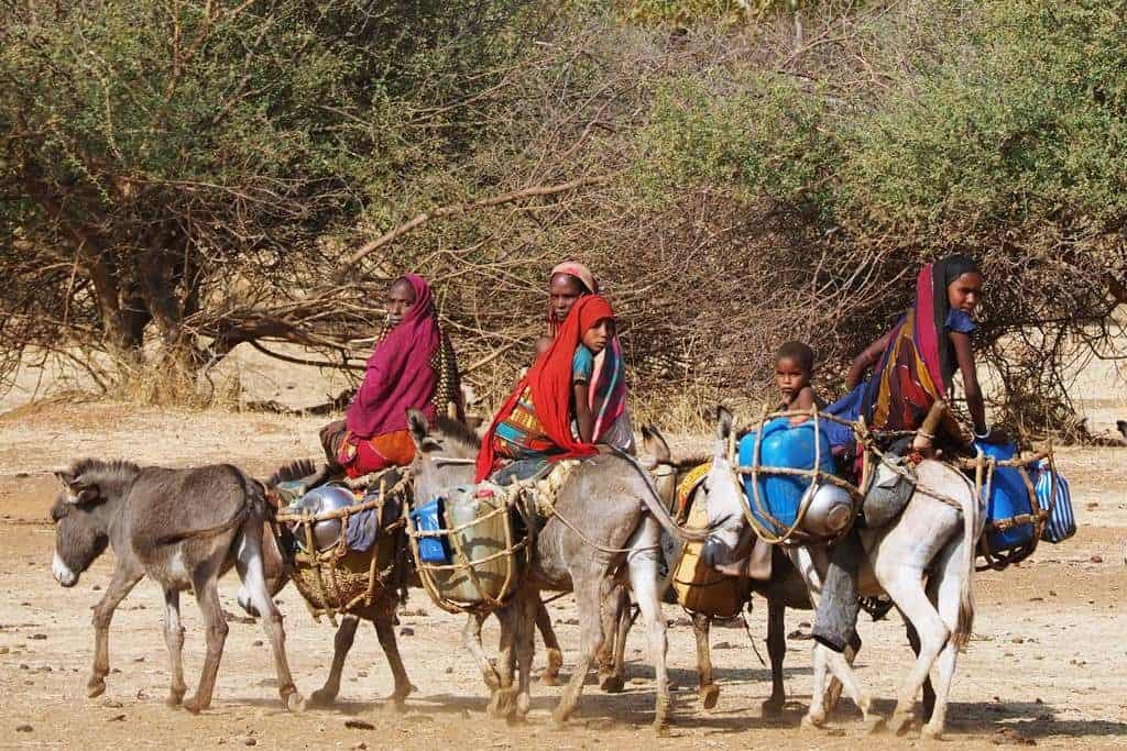 Tours to Chad