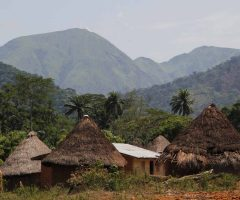 Trips to Guinea Conakry