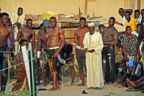 Boxing Dambe Nigeria
