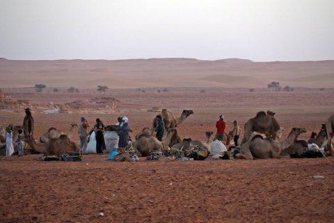 Nomads Ennedi