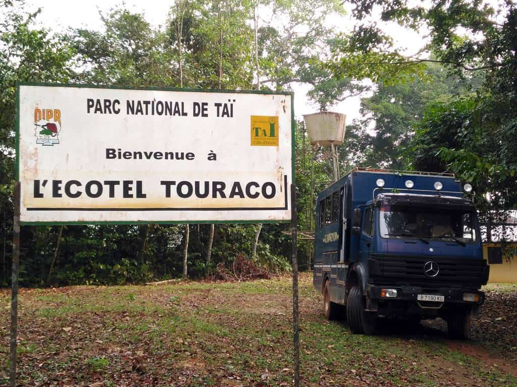 Visit Tai National Park in Ivory Coast