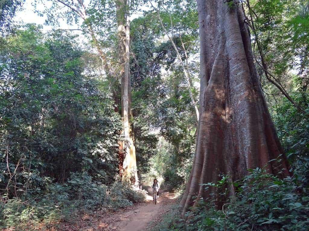 Ruta en bicicleta por Cantanhez Guinea Bissau