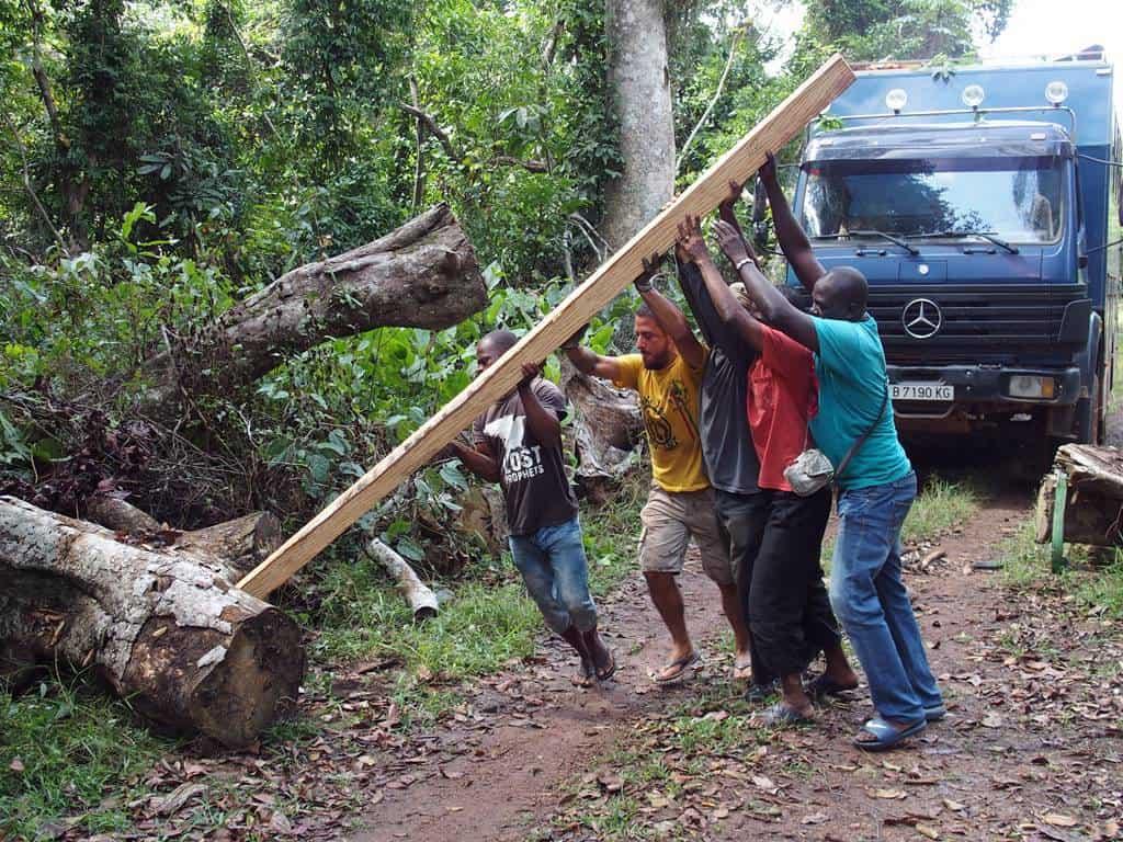 Llegar al Parque Nacional de Tai en Costa de Marfil