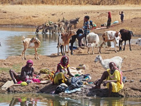 Water in the Sahel